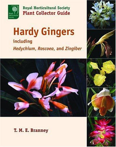 Hardy Gingers