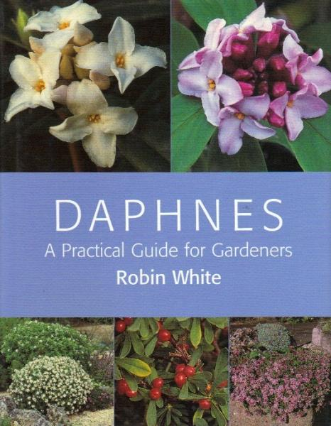 Daphnes. A pratical guide for gardeners.