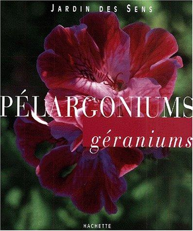 Pélargoniums, géraniums