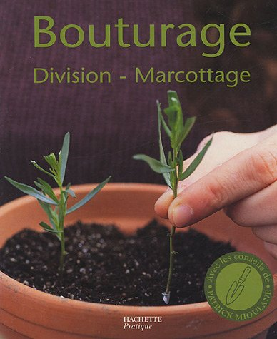 Bouturage, division, marcottage