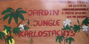 vignette Jardin Jungle Karlostachys